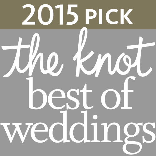 DJ Bri Swatek Wins The Knot Best of Weddings Award 2015