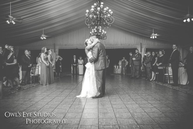 Hudson Valley DJ Bri Swatek First Dance 2 West Hills Owls Eye Studios ALRS