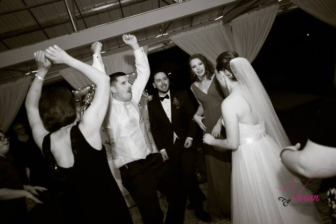 Hudson Valley Wedding DJ Bri Swatek Dance Party Lippincott Manor Vivian Photography LRMB