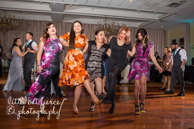 Hudson Valley Wedding DJ Bri Swatek Dance Party 4 Grandview Little But Fierce Photography FWDW